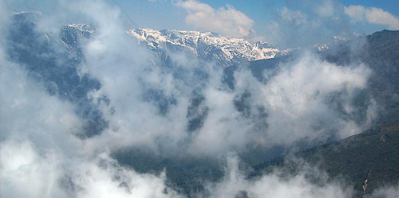 Dzongri