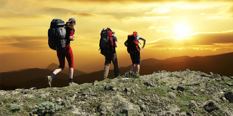 Hiking increases Brain