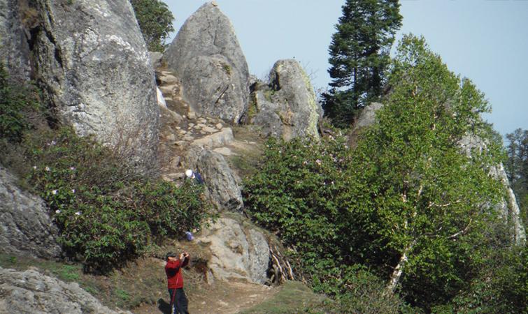 Churdhar Peak Hiking