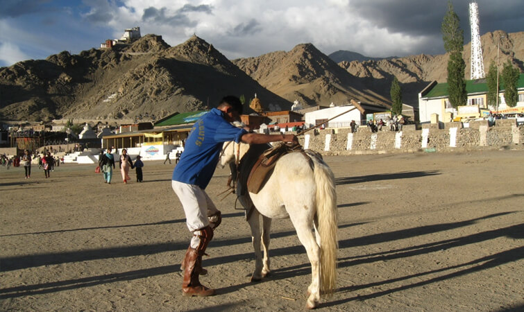 Polo in Ladakh
