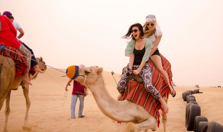 Camel Safari in India