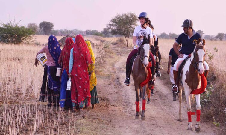 Horse Safari in India