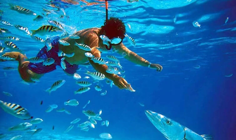 Snorkelling in India